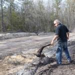 Bill removes a stump